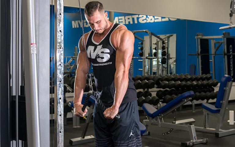 product b bodybuilding